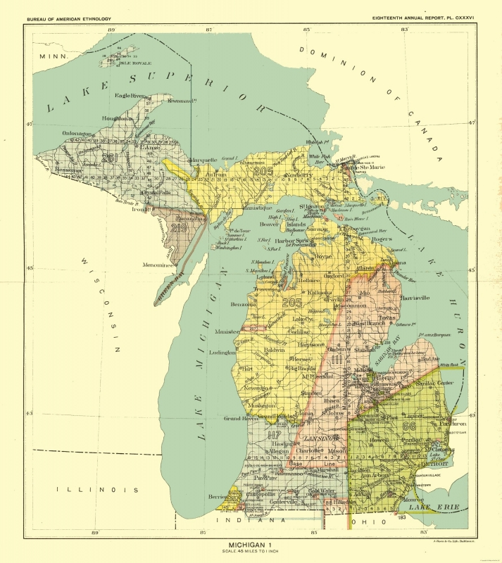 Old State Map - Michigan - Hoen 1896 - 23 x 25.82